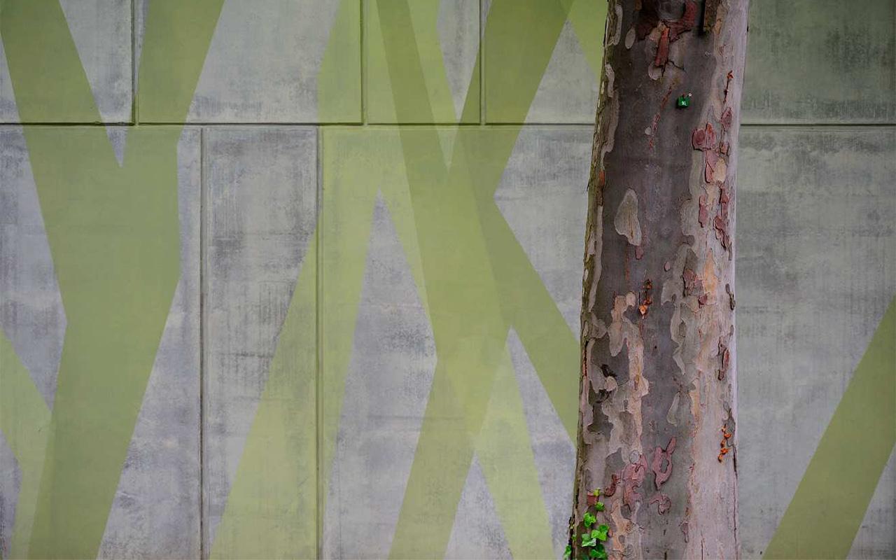 tree_1280x800